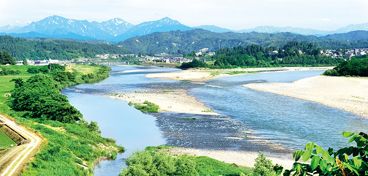 魚野川堤防