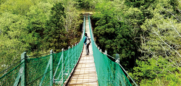 おぐに森林公園の吊り橋