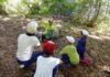 自然豊かな環境で『自分らしさ』を発揮できる学校